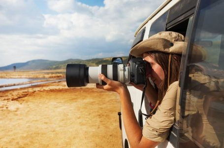 The Best Cameras for Safaris